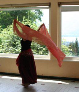 voile,cane,sequins, danse orientale, annecy, stage été
